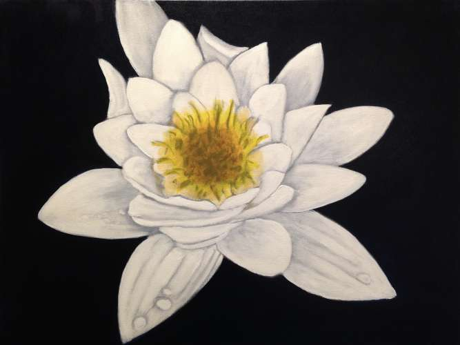 Water Lily, Acrylic, 18 x 24, $$350.0000