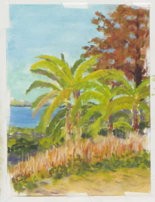 Sabal Point, Pastel, 7x10 (framed: 11x14), $$125.0000